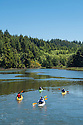 Kayaking tour group on Lint Slough at Waldport on the central Oregon Coast.