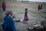 ATEKAL, TANZANIA - NOVEMBER 15: Maasai children walk next to their dead cattle carcasses on November 15, 2009 in their village in Atekal, Tanzania. The village has lost about 300 cattle. This area has been severely affected by drought the last two years and as many as 3-4000 cattle has died in recent months. The Maasai tribe populates the area and many of them has given up on farming and traveled to cities such as Arusha to look for work. Indigenous peoples globally, such as the Maasai in Tanzania and Kenya, are disproportionately affected by the impacts of climate change due to fragile and harsh ecosystems. (Photo by Per-Anders Pettersson)....