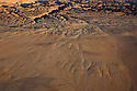 Namibia, Namib Desert, Dorob National Park, aerial of erosion forms at Welwitschia Plains and canyons of the Swakop River
