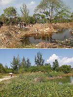 Using elephants search crews bring back a body found in the forest following the tsunami hit Khao Lak in Thailand on the morning of Dec 26, 2004..Five years later a girl walks the same track, not a sign of the tragedy can be seen any more.