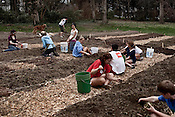 Carolina Campus Community Garden | 2010.03.18