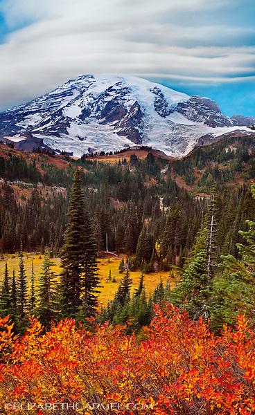 Mount Ranier in Autumn II