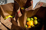 Fresh fruits and vegetables are organized for distribution to citizens of Crystal City, Texas. The San Antonio Food Bank makes monthly deliveries to Crystal City in Zavala County, Texas, which has the nation's highest rate of food insecurity. October 2, 2012. Copyright Lance Rosenfield / Prime