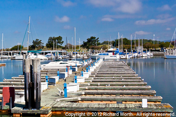 Rows of empty berths with masts and yachts and in the background at the San Leandro Marina, San Leandro, California.