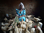 Margaret Lubwama feeds her chickens in Kabulasoke, Uganda, where the Ntulume Village Women Development Association has trained women in improved agricultural practices, thus increasing food security and empowering women and children. Lubwama has been an enthusiastic participant in the program, which was supported by funding from the Call to Prayer and Self-Denial of United Methodist Women.