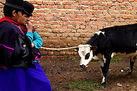 Guambiano men negotiate the sale of a cow during the traditional Indian market in Silvia, Colombia, 8 April 2004. The Guambiano, a South American Indian tribe, live in the southwestern corner of Colombia. There are about 20.000 of Guambianos living in communities close to their capital town of Silvia. Guambianos are traditionally agricultural people. Since the Spanish conquest they have been gradually evicted from their original fertile lands up to the cold, rainy mountains. In spite of the permanent pressure by Colombian society, the Guambiano Indians still speak their original language, keep their colorful clothes and maintain their nature based religious customs.