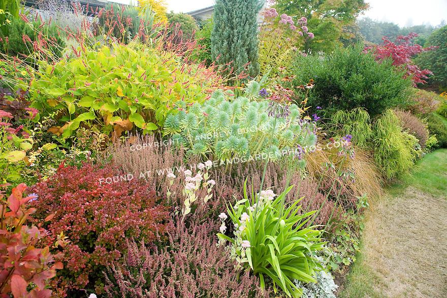 Top 28 Hearty Perennials A Fall Foliage Garden