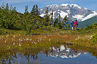 Tourists view Mount Muir, Chugach National Forest, Prince William Sound, Alaska.