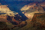 late evening sunlight shining over bright angel creek in the grand canyon