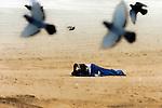 Yesterday's Dreams, homeless woman on the beach, Seal Beach, CA.
