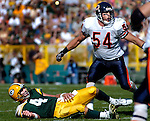 Green Bay's Brett Favre on the turf after his 4th and 8-yard pass was thrown after at the end of the game. He was pressured by Chicago's Brian Urlacher. .The Green Bay Packers hosted the Chicago Bears at Lambeau Field Sunday, September 19, 2004. WSJ/Steve Apps.