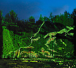 Abstract light projection on trees, beautiful abstract night nature scenery