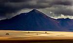 Altiplano, Bolivia , Salvador Dali Valley