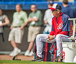 22 February 2013: Washington Nationals' Manager Davey Johnson his team take batting practice during a full squad Spring Training workout at Space Coast Stadium in Viera, Florida. Mandatory Credit: Ed Wolfstein Photo *** RAW File Available ***