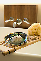 Detail of a pumice stone in a mother of pearl shell and natural sea sponge on a wooden bath rack