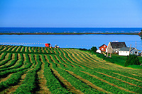 Near Cumbria, Prince Edward Island, Canada