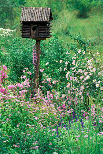 Bird house build like hand hewn log cabin sits in pastel meadow of wild flowers in shades of pink, Midwest USA