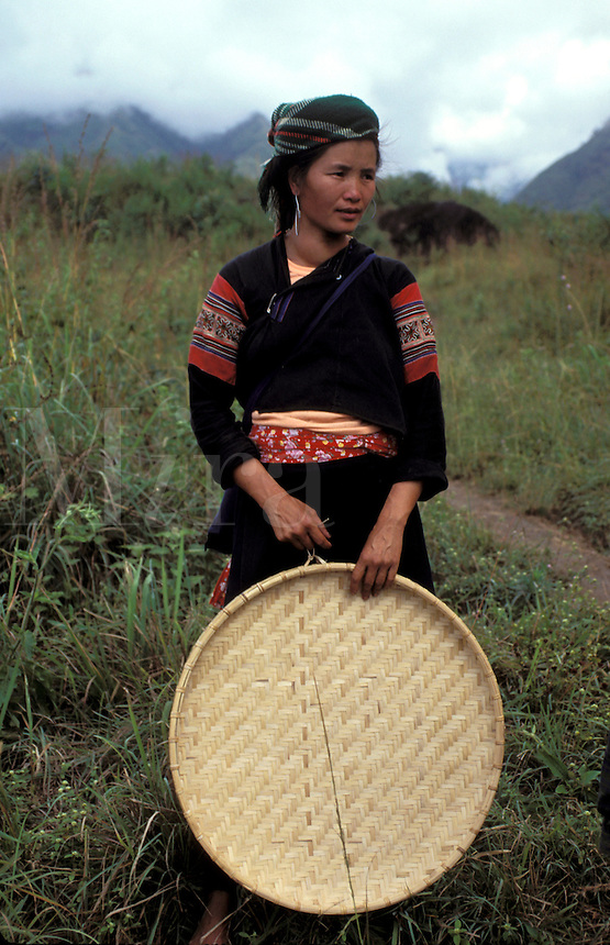 Hmong Lady with Rice Basket  North Vietnam LaoCai Province  South East Asia Hill Tribe