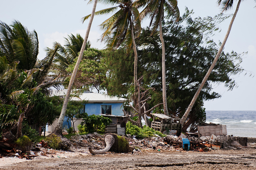 On the ocean side of the poorer areas of Majuro Atoll, high tides encroach on houses, ineffectually blocked by home-made sea wall. Fallen palms litter the shoreline, July 2009.