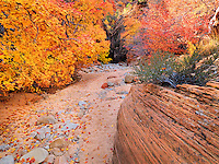 Slot Canyon in Autumn