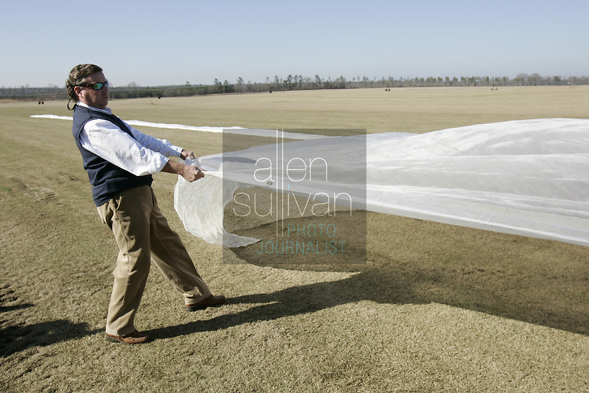 Phillip Jennings,owner of Jennings Turf Farms, helps pull a tarp over a section of turf in Riddleville, Ga. on Thursday, Dec. 28, 2006 to promote seed germination. About 100,000 square feet of the turf will be trucked to Miami to be used for the Super Bowl game.