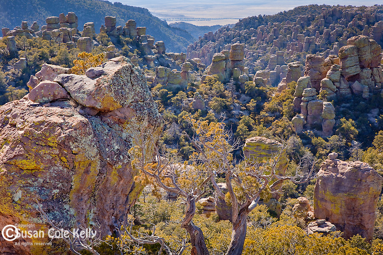 Heart of Rocks in Chiracahua National Monument, AZ, USA