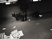 Street Photography, Italy, Lombardy, Milan, Milano, dark,dog