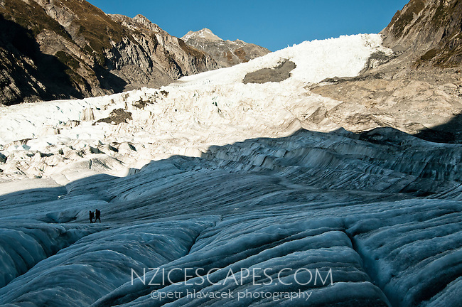 Climbers hiking on nicely patterned Franz Josef Glacier, Westland National Park, West Coast, New Zealand