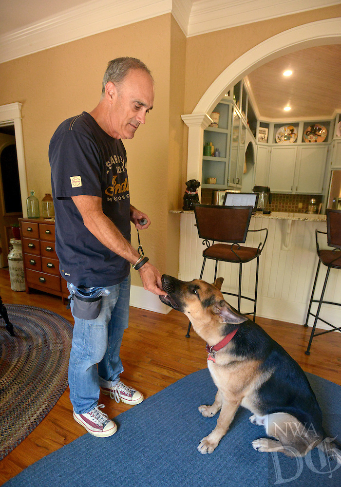 NWA Democrat-Gazette/BEN GOFF @NWABENGOFF<br /> Jim Hiland trains Scout, a 7 month-old German shepherd, on Friday Sept. 11, 2015 at his Bentonville home. Hiland is a puppy raiser for Soldier ON, an organization that trains and places service dogs with veterans with PTSD.