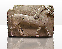Picture of Phrygian releif sculpture Orthostat of a horse from Kucukevier, Ankara, Turkey. Ancora Archaeological Museum. 7th century BC. Note the stylised leg muscels. 3