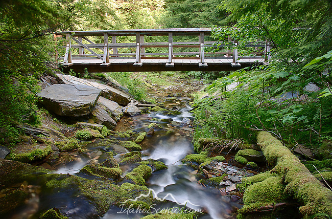 Idaho, North, Kingston, Prichard. The trail bridge at Fern Falls in late spring.