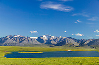 Island lake and summer landscape of the Endicott Mountains of the Brooks range in Alaska's Arctic.