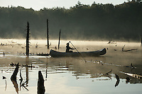 Woodford, VT, USA - August 23, 2008: Girl paddling a canoe between tree stumps on a beaver pond atop the Green Mountains of southern Vermont as the early morning mist rises with the sun