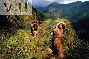 A local farm woman from the Kangchenjunga region. Nepal