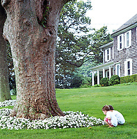 Two young brothers admiring the flowers around a large tree in their garden