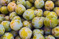 Flavor Grenade Pluots, Fresh Fruit, Produce, Farmers Market, Farm-fresh produce, fruits,