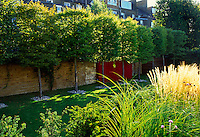 Elevated view of grass area flanked by pleached  Hornbeam trees.  Red Venetian plaster wall detail adds interest to the old boundary brick wall