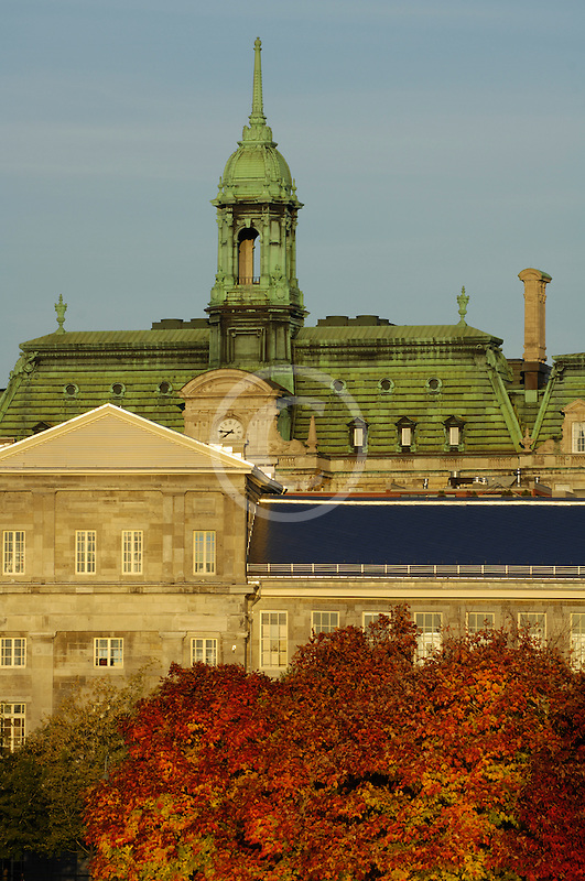 Canada, Montreal, Hotel de Ville, Town Hall, with fall foliage