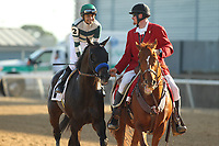HOT SPRINGS, AR - MARCH 18: Mor Spirit #2, ridden by Mike Smith after winning the Essex Handicap race at Oaklawn Park on March 18, 2017 in Hot Springs, Arkansas. (Photo by Justin Manning/Eclipse Sportswire/Getty Images)