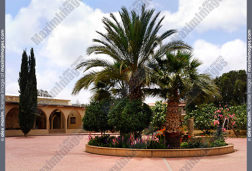 Travel stock photo of a Flower bed with palms at Saint Nicolas Monastery territory near Limassol in Cyprus Spring 2007 Horizontal