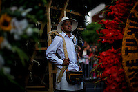 "A silletero rests after carrying flowers while he attends the traditional ""Silletero"" parade during the Flower Festival in Medellin August 7, 2012. Photo by Eduardo Munoz Alvarez / VIEW."