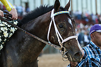 HOT SPRINGS, AR - April 15: Classic Empire #2 and jockey Julien Leparoux  enter the winners' circle after winning the Arkansas Derby at Oaklawn Park on April 15, 2017 in Hot Springs, AR. (Photo by Ciara Bowen/Eclipse Sportswire/Getty Images)
