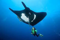 QT2093-D. Manta Ray (Manta birostris) swimming overtop scuba diver (model released). Baja, Mexico, Pacific Ocean.<br /> Photo Copyright &copy; Brandon Cole. All rights reserved worldwide.  www.brandoncole.com