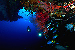 East Indonesia, Raja Ampat,  cavern and overhang