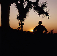 Stock sunset photo of a man standing near some Joshua Trees and gazing at a desert sunset.
