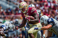 TALLAHASSEE, FLA 9/10/16-Florida State's Jacques Patrick runs between two Charleston Southern player during the second quarter Saturday at Doak Campbell Stadium in Tallahassee. <br /> COLIN HACKLEY PHOTO