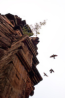 Birds fly from the façade of the church at the verdant ruins of the mission at San Ignacio Mini, Argentina. Scores of Jesuit missions in the area where Paraguay, Argentina and Brazil meet were built in the 17th century and abandoned when the Jesuits were expelled in the 18th century. Ruins of some of these missions still haunt hilltops in the region. (Kevin Moloney for the New York Times)