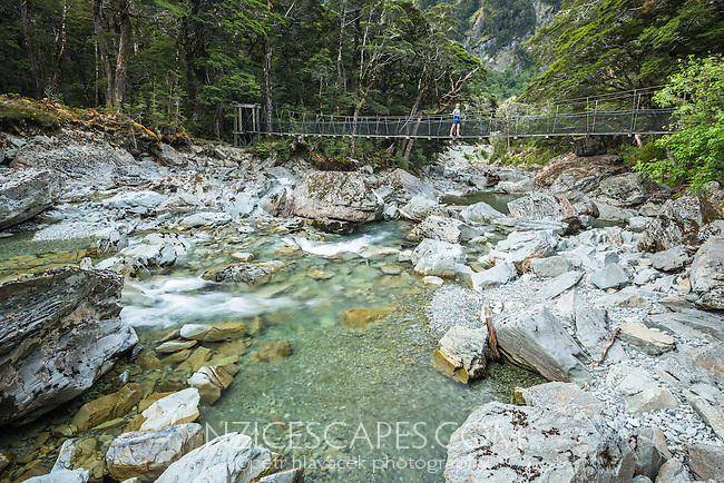 Female hiker on swingbridge over pristine waters of Route Burn River on Routeburn Track, Mt. Aspiring National Park, Central Otago, UNESCO World Heritage Area, New Zealand, NZ