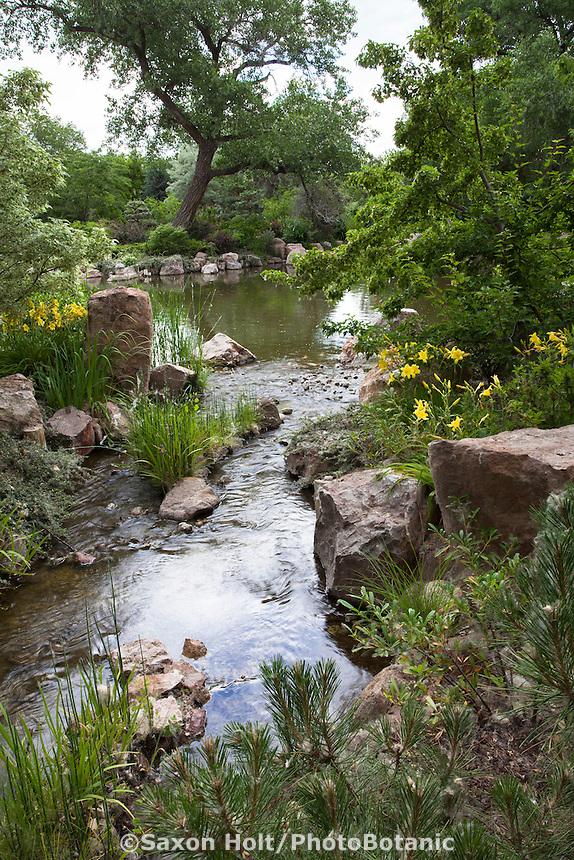 Pond edged with daylilies at Sasebo Japanese Garden at Rio Grande Botanic Garden