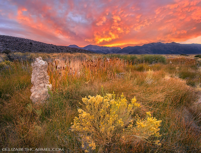 Sierra Sky, Mono Lake